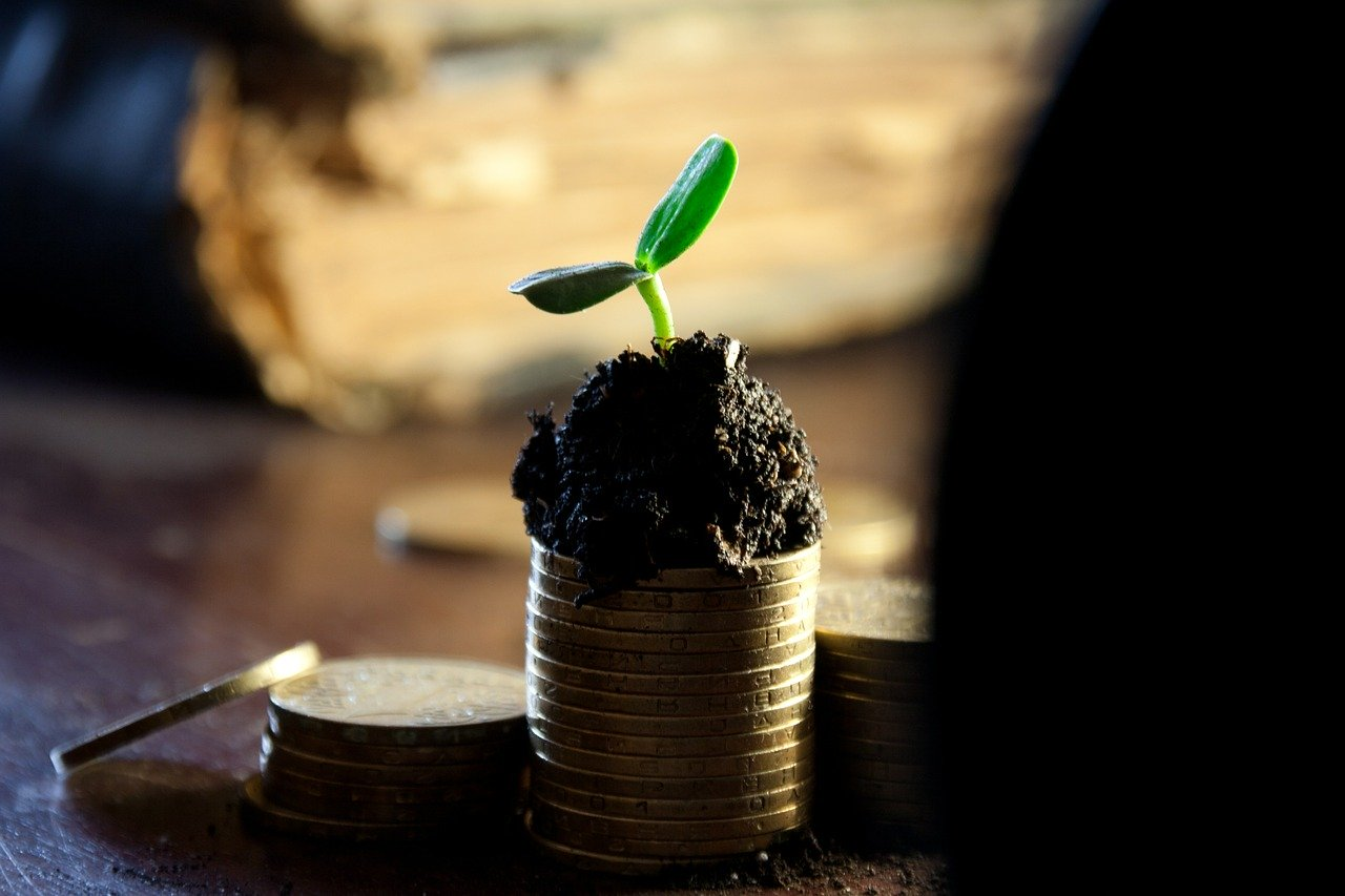 Investmentstrategien: Growth-Aktien